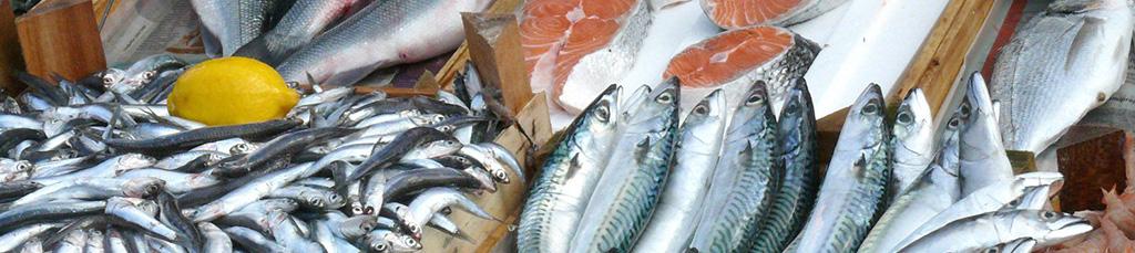 slid-pesci